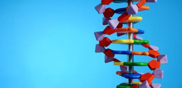 zespol-downa-jest-wynikiem-obecnosci-diodatkowego-materialy-genetycznego-zawartego-w-chromosomie-21-ARTICLE_MAIN-58878